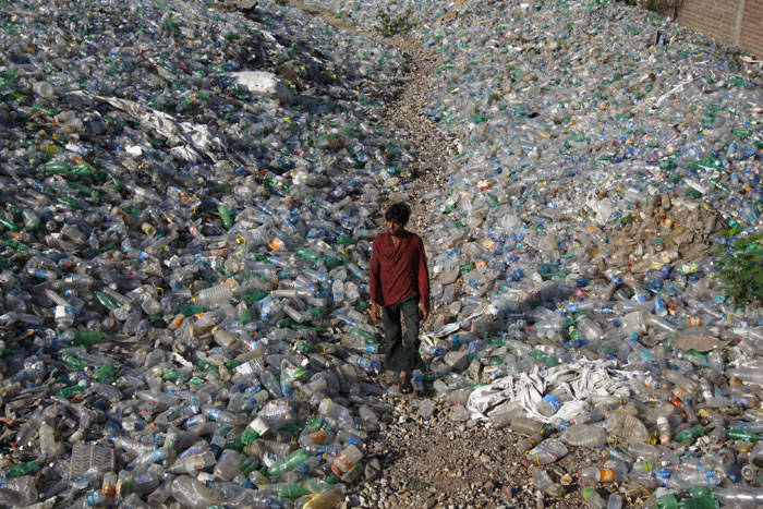 essay on plastic bags and environmental problems The plastic problem how plastics affect the environment environmentally plastic packaging – especially the ubiquitous plastic bag.