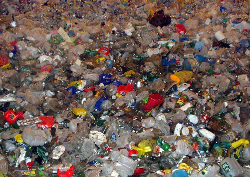 Waste of plastic bottles